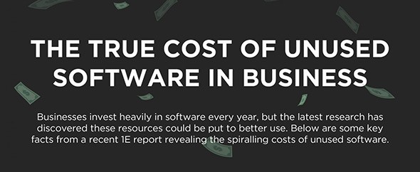 The True Cost of Unused Software in Business [Infographic]