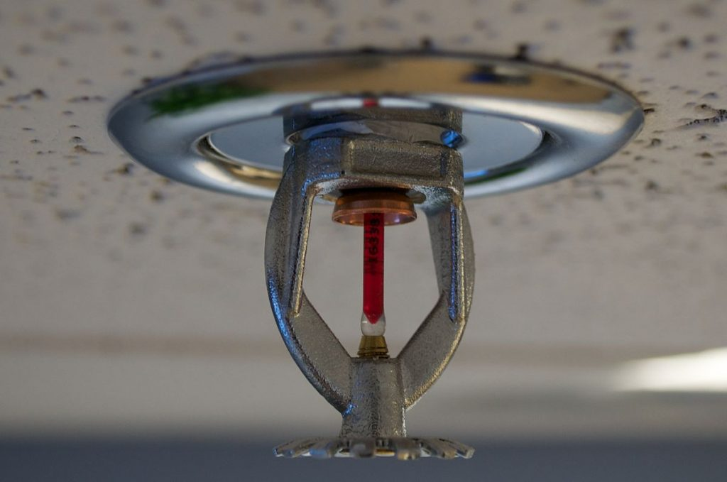 Facilitating Success: Essential Amenities Every Startup Needs -Fire Sprinklers